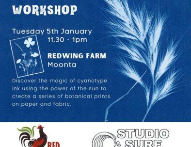 sun prints workshop jan